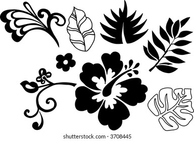Tropical Elements Vector Illustration