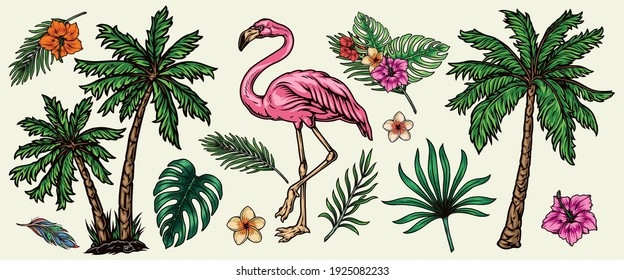 Tropical elements vintage colorful concept with beautiful pink flamingo palm trees exotic flowers and leaves isolated vector illustration