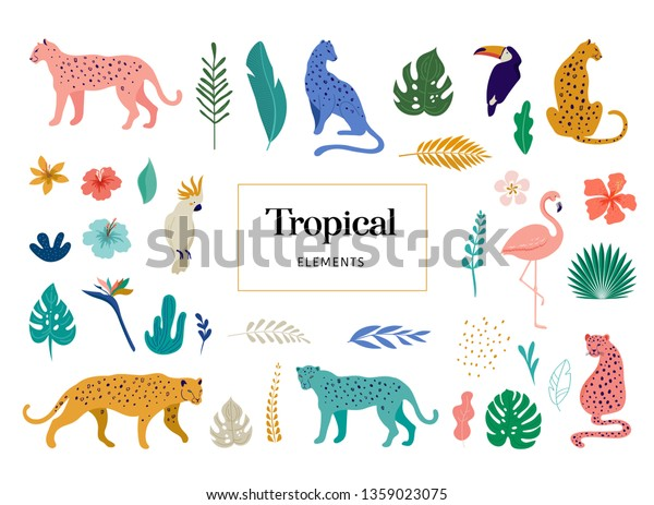 Tropical Exotic Animals Birds Leopards Tigers | Royalty-Free Stock ...