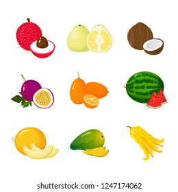 Tropical exotic Fruits set isolated on white background. Half and whole of juicy fruits. Cartoon flat icon collection. Lichee pomelo kumquat coconut passion fruit watermelon melon mango buddha hand