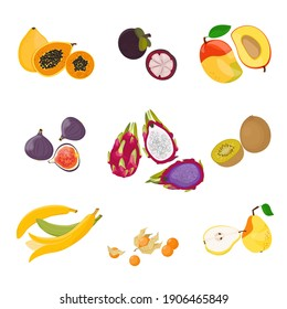 Tropical exotic fruits set. Raw vegetarian food. Vector illustration cartoon flat icon collection isolated on white.