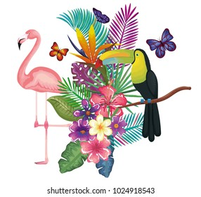 tropical and exotic garden with flemish and toucan