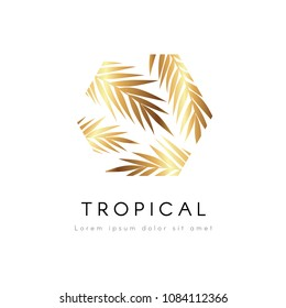 Tropical exotic hexagonal emblem. Golden palm tree leaves vector logo.