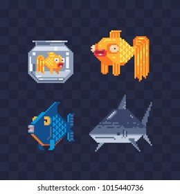 Tropical fish collection. Pixel art. Vector flat illustration sea color tropical fish icon. Element design for mobile app and sticker. Design various aquarium fish isolated. Goldfish and shark.