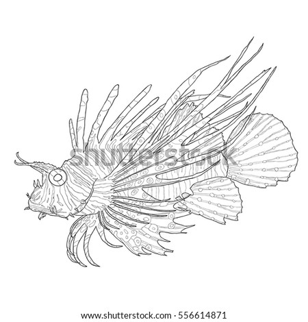 Tropical Fish Scorpion Red Lionfish Stock Vektorgrafik