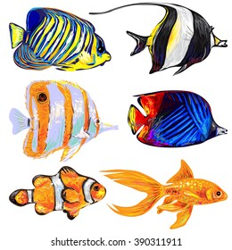 Tropical fish, sea fish, aquarium fish, reef fish collection. Set of different exotic fish vector illustration. Underwater life hand drawn fish