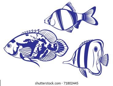 Tropical Fish Set 2 Vector Illustration On White Background For Design