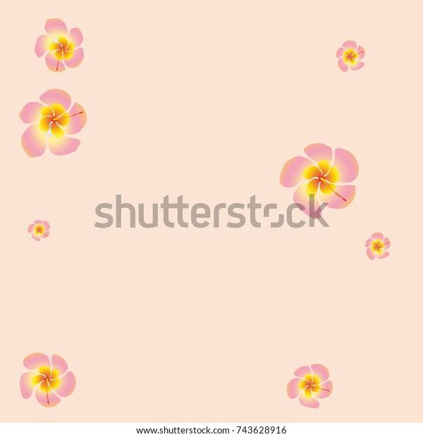 Tropical Flower Background Floral Design Pattern Stock