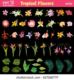 Tropical Flowers Design Elements Set - Vintage Colorful Style  - in vector