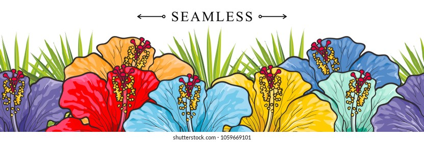 Tropical flowers hibiscuses seamless border pattern with sketch multicolor blossoms. Hand drawn vector illustration of floral tropic summertime backdrop with exotic blooms of rose mallow.