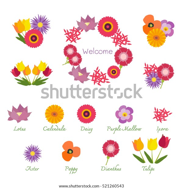 Tropical Flowers Isolated Names Showing Bouquets Stock