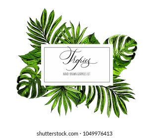 Tropical flowers and leaves on the background. Set of hand-drawn tropical plants. For wedding invitations, cards greetings and other