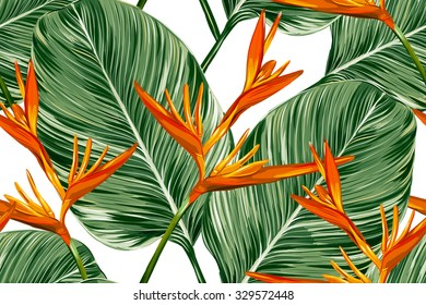Tropical flowers, palm leaves, bird of paradise flower. Beautiful seamless vector floral jungle pattern background, exotic print
