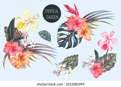 Tropical flowers, palm leaves, jungle leaf, bird of paradise flower, hibiscus, orchid compositions. Vector exotic illustration, floral elements isolated, Hawaiian bouquet for greeting card, wallpaper