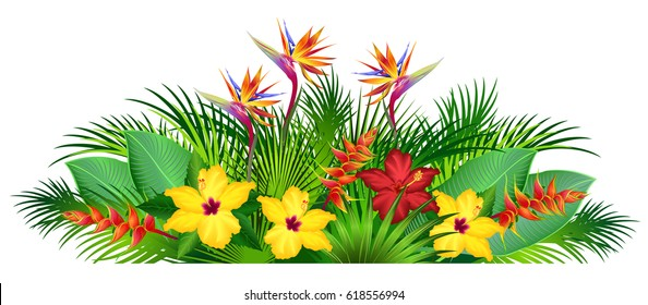 Yellow Hibiscus Drawing Images Stock Photos Vectors Shutterstock