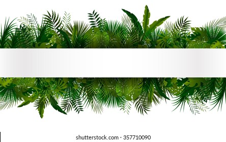 Tropical foliage. Floral design background.vector