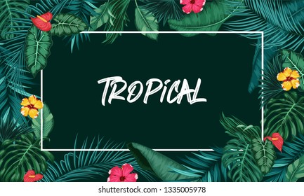 Tropical forest with rectangle frame on black background