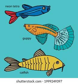 Tropical Fresh Water Aquarium Fish Guppy Catfish Neon Tetra