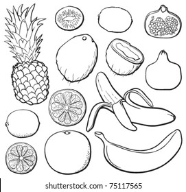 Tropical fruit set, black and white, each in separated layer. Vector illustration.