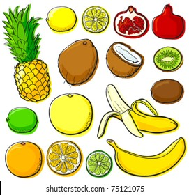 Tropical fruit set without gradients. Each in separated layer, vector illustration