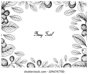 Tropical Fruits, Illustration Frame of Hand Drawn Sketch Ripe Coffee Berries or Coffee Arabica or Cocoplum, Paradise Plum, Abajeru or Chrysobalanus Icaco Fruits Isolated on White Background.