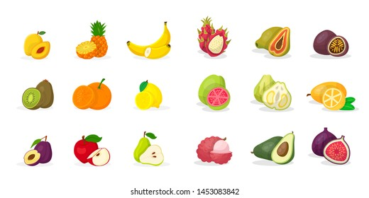 Tropical fruits vector illustrations set. Sliced pineapple, banana, kiwi, pear, apricot, plum, kernel,citrus, apple, pomelo, guava, kumquat, dragon fruit, papaya, passion fruit, lychee, avocado, fig