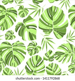 Tropical green monstera leaves seamless pattern white background. Exotic floral wallpaper. Jungle plants - Vector.
