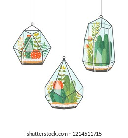 Tropical house plants and cactus in hanging terrariums or florariums. Decorative vector isolated succulents composition