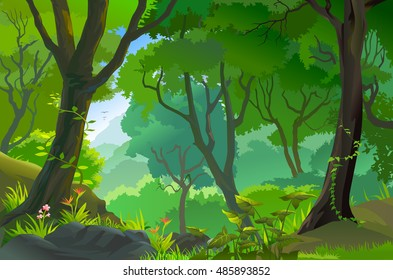 Tropical Jungle with tall trees