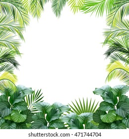Tropical jungle vector background with palm trees and leaves.