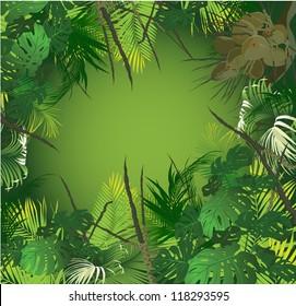tropical landscape (tropical plants vector illustration)