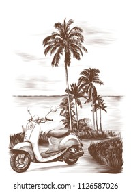 tropical landscape road surrounded by palm trees and grass, in the background sea, on the road is a retro bike, sketch vector graphics monochrome illustration on white background