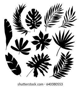 Tropical Leaf Cutout Stock Illustrations Images Vectors