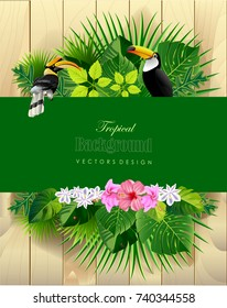tropical leaves with bird backgrounds vectors