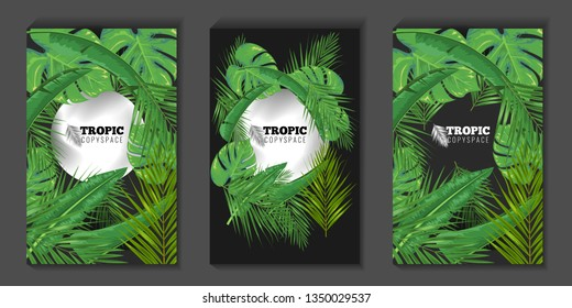 Tropical leaves and circle copyspace background for banner or posters. Summer concept Social media cover or story template. Vector illustration.