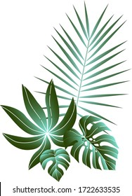 Tropical leaves composition. Jungle foliage design for postcard, label, web design or post in social networks. Paradise nature element. Botanical vector illustration isolated on white background.