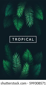 Tropical leaves. Exotic tree foliage. Green palm tree vector leaf and text on black background. Jungle theme design template for banner or poster. Vintage style frame. EPS 10.