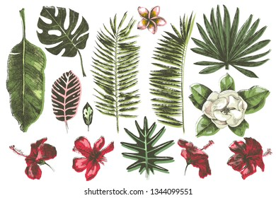 Tropical leaves and flowers collection. 14 hand drawn colorful unique elements. Vector illustration