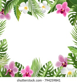 Tropical Leaves and Flowers. Hawaii. Bali Orchid and Frangipani blossom, Palm tree leaves. Summer Vacation vector background.