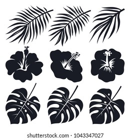 Tropical leaves and flowers. Monstera, hibiscus, coconut palm. Vector silhouettes