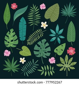 Tropical leaves flowers vector tropic hibiscus flowering plant and leaf foliage palm or banana tree in jungle exotic monstera and fern in summer isolated on background illustration