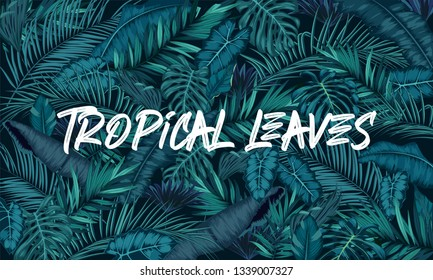 Tropical leaves forest background