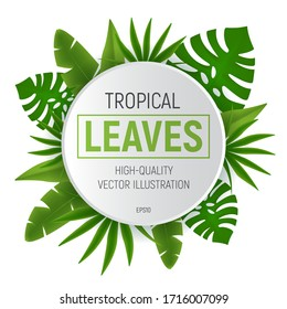 Tropical leaves round frame with green palm tree leaf. Vector illustration isolated on white background