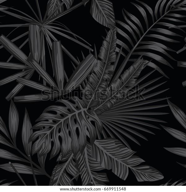 Carta Da Parati Tropicale Bianco E Nero.Immagine Vettoriale Stock 669911548 A Tema Foglie Tropicali Senza