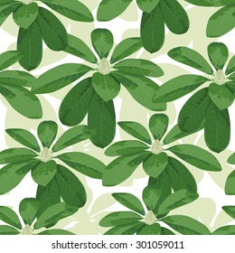 Tropical leaves seamless pattern. Vector background.