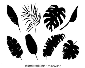Tropical leaves set with isolated elements. Hand drawn illustration. Silhouette
