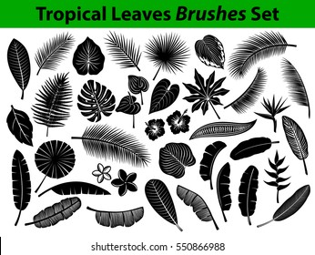 Tropical Leaves Silhouette Set with some flowers in black color as Coconut, Fan, Banana Palm, Monstera, Fern, Bird of Paradise, Plumeria, Heliconia, Hibiskus. Leafs are included as BRUSHES in Library.