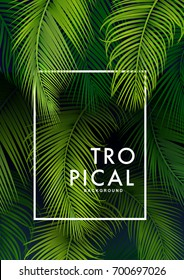 Tropical Palm Background. Summer Illustration.