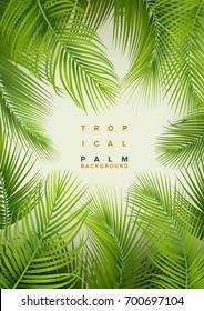 Tropical Palm Background. Summer Illustration.