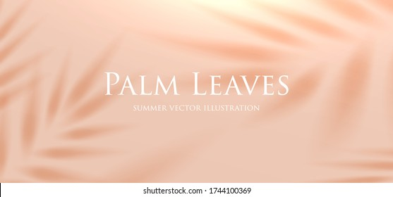 Tropical palm leaf shadow. Summer beach sand fashion background concept for travel vacation or ecological green cosmetics design. Eps10 vector.